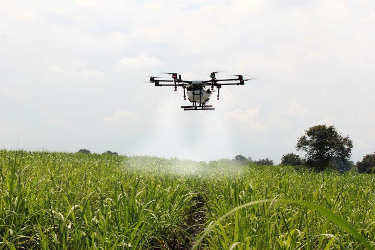 TIM leva 4G e IoT para agroindústria no Mato Grosso do Sul