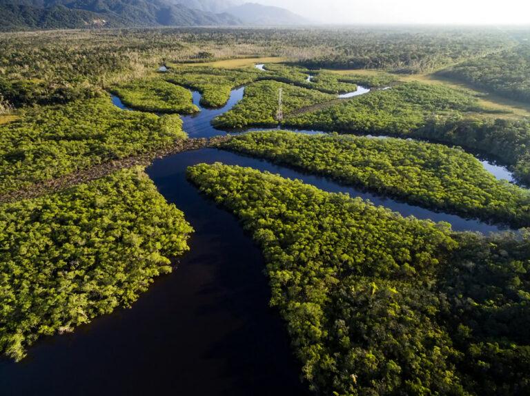 Presidente da Anatel questiona papel da RNP e sugere leilão reverso para Amazônia com saldo da TV digital